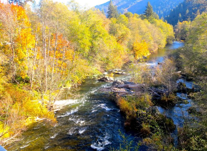 Fall photo of the Applegate River by Curtis Mekemson.