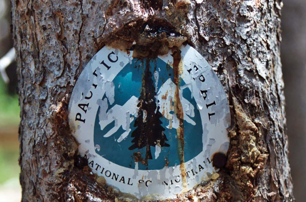 Pacific Crest Trial sign in Yosemite National Park. Photo by Curtis Mekemson.