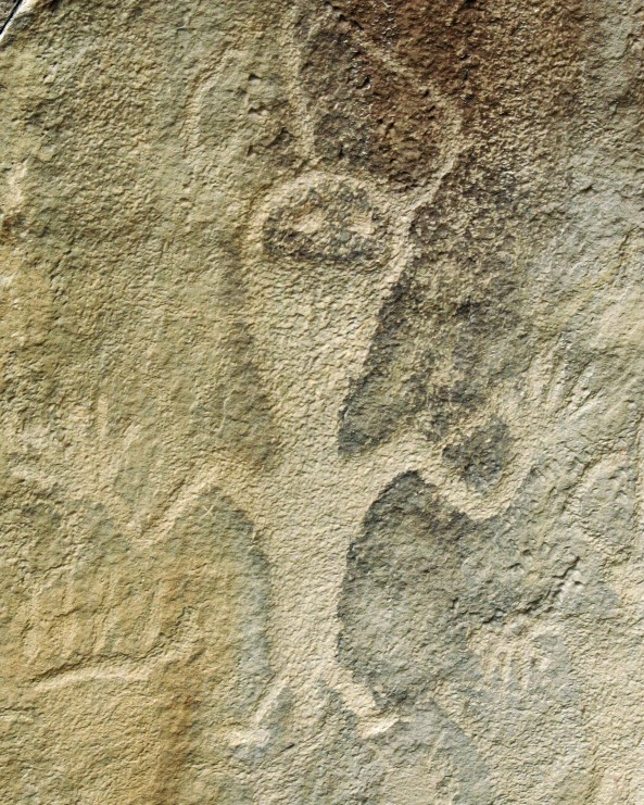 Petroglyph at Dinosaur National Monument. Photo by Curtis Mekemson.