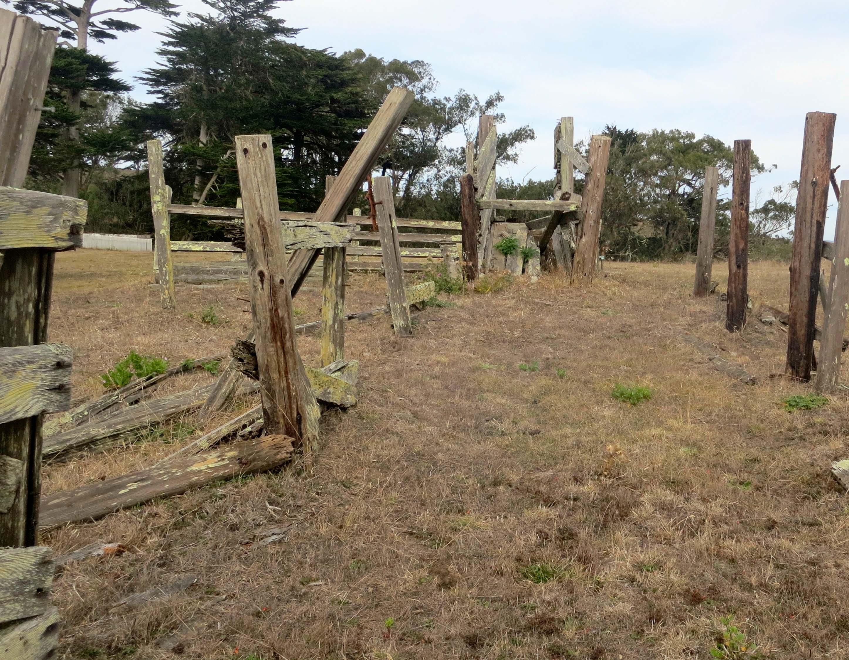 Old cattle pen at Pierce Ranch at Pt. Reyes National Seashore. Photo by Curtis Mekemson.