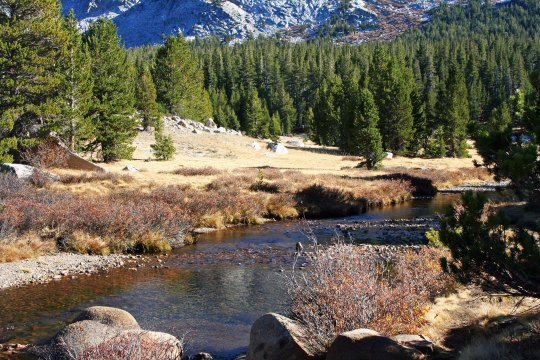 Tuolumne River flows through Tuolumne Meadows in Yosemite National Park. Photo by Curtis Mekemson.
