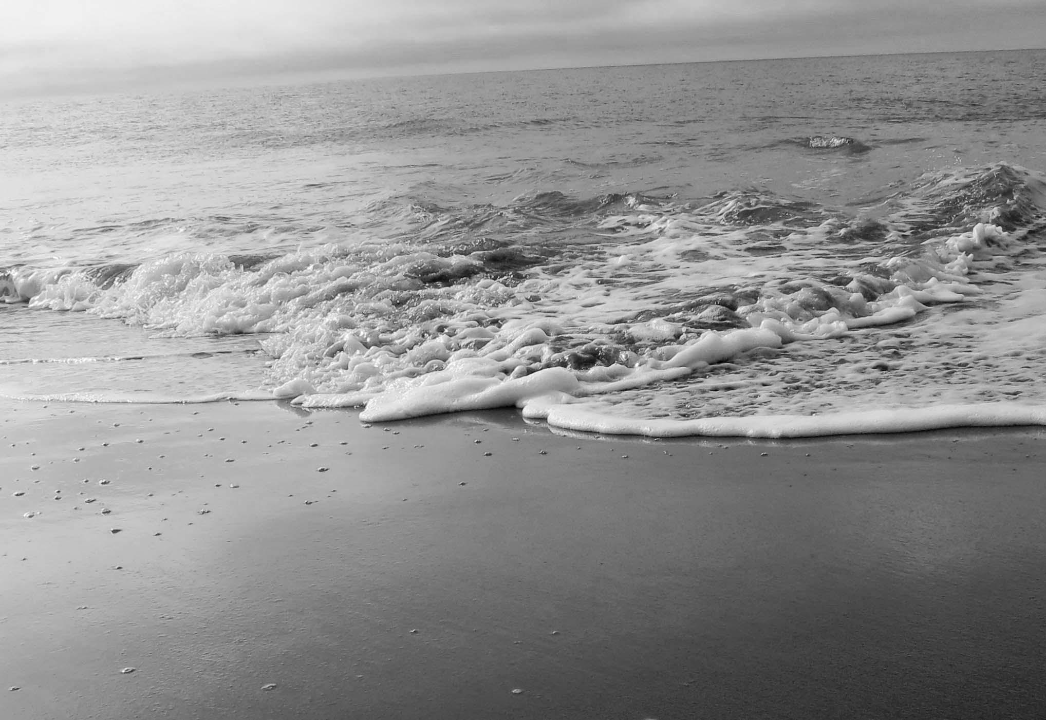 Gentle waves visit Limantour Beach at Pt. Reyes National Seashore. Photo by Curtis Mekemson.