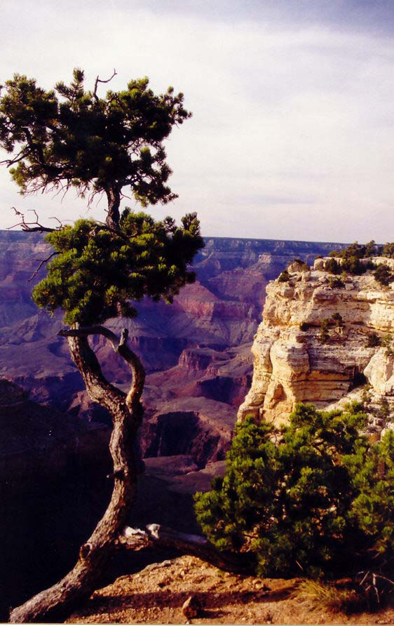 Sunset at Grand Canyon National Park in Arizona. (Photo by Peggy Mekemson.)