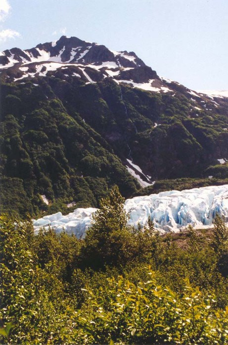 Exit Glacier in Kenai Fjord National Park. Photo by Curtis Mekemson.