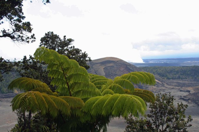 Volcano Natioanl park photo by Curtis Mekemson.