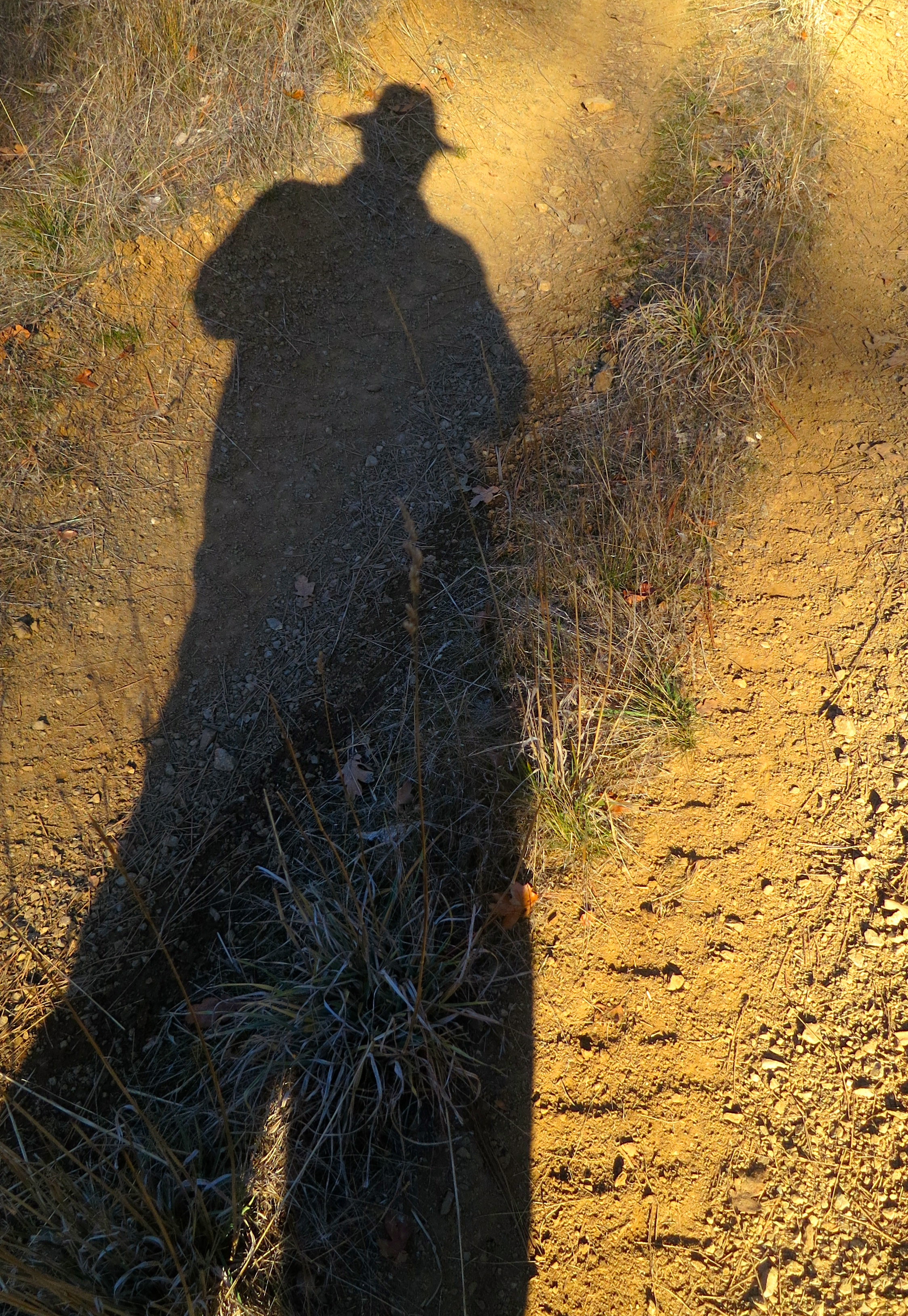 """Just """"me and my shadow strolling down the avenue."""""""
