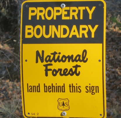 My preference is always for the woods. Our property line on the back is the Klamath National Forest.