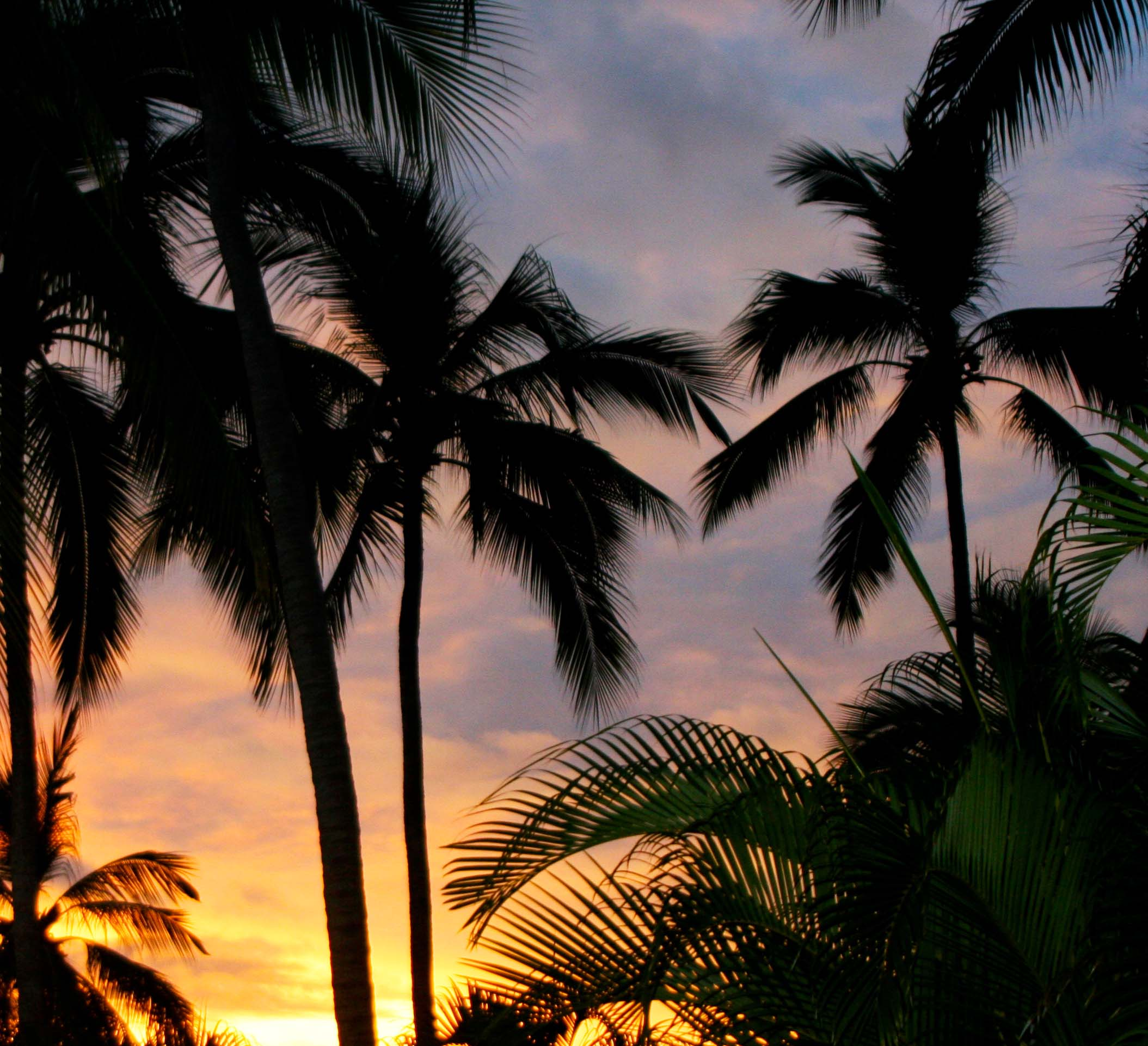 Sunset over Bandaras Bay, Puerto Vallarta. (Photo by Peggy Mekemson.)