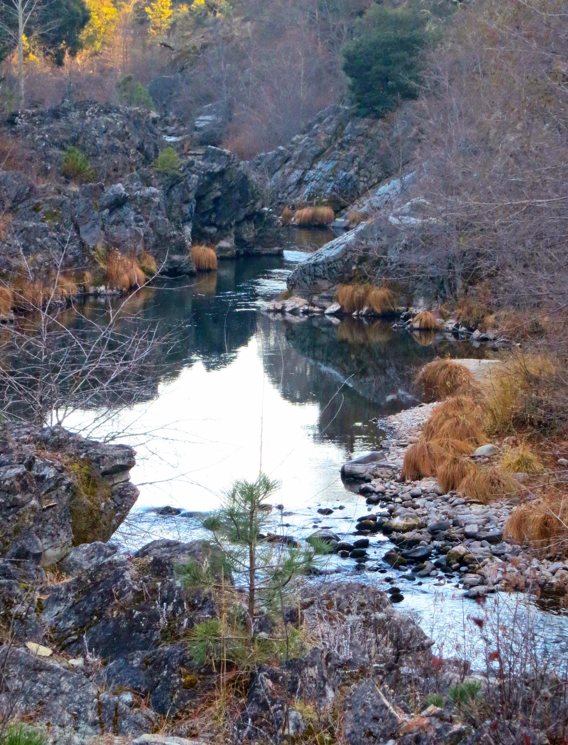 Applegate river in winter. Photo by Curtis Mekemson.