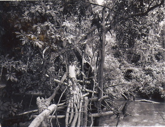 Kpelle footbridge near Gbarnga, Liberia circa 1965.