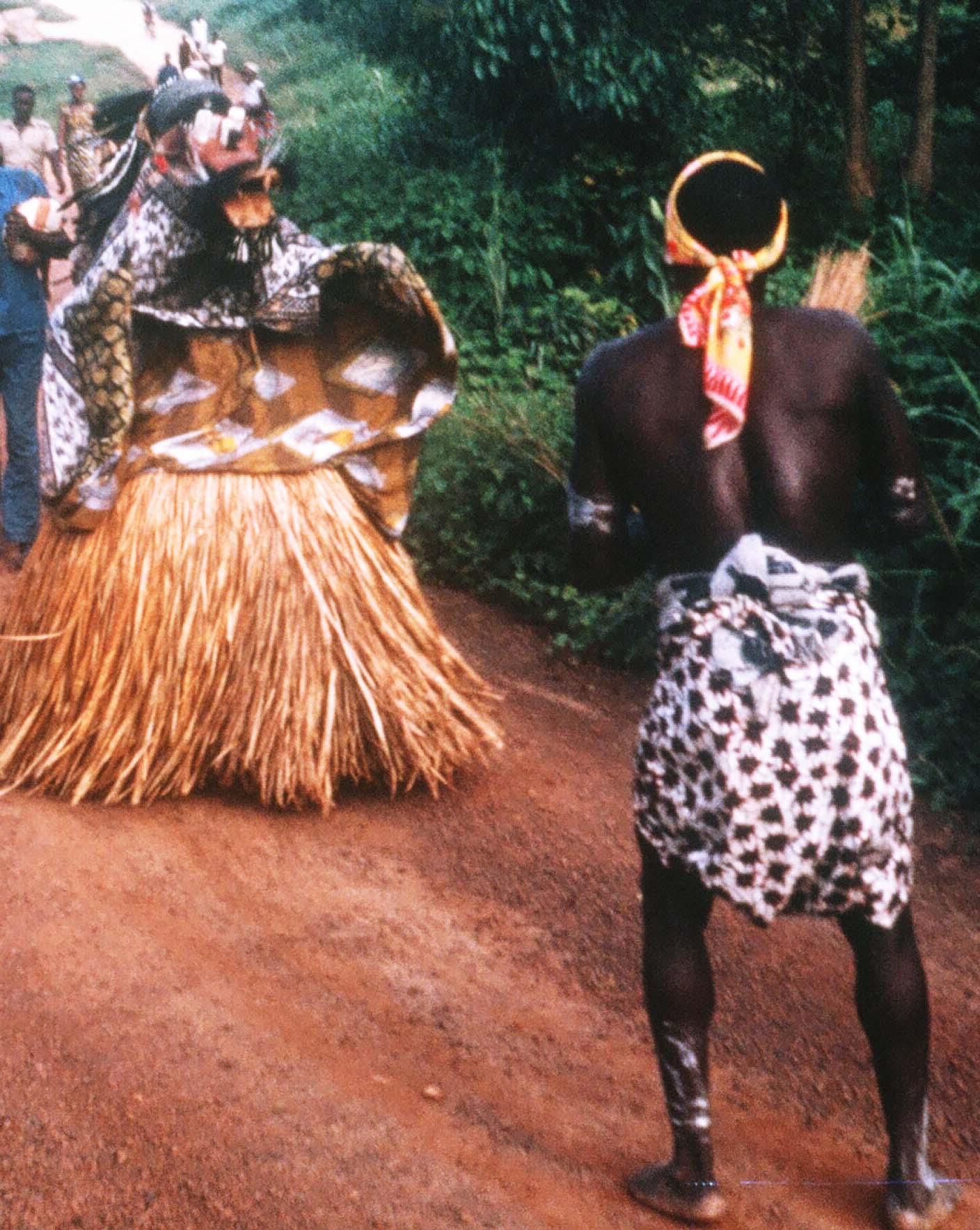 Liberian Bush Devil photo by Curtis Mekemson.