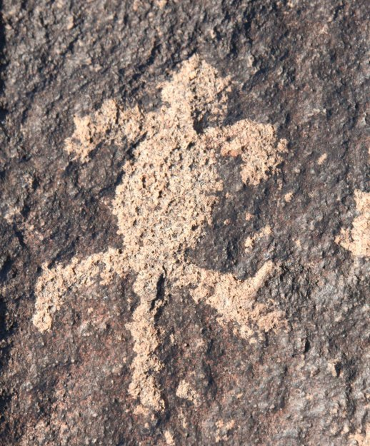 Petroglyph of a lizard found at Painted Rock Petroglyph Site in Southern Arizona.