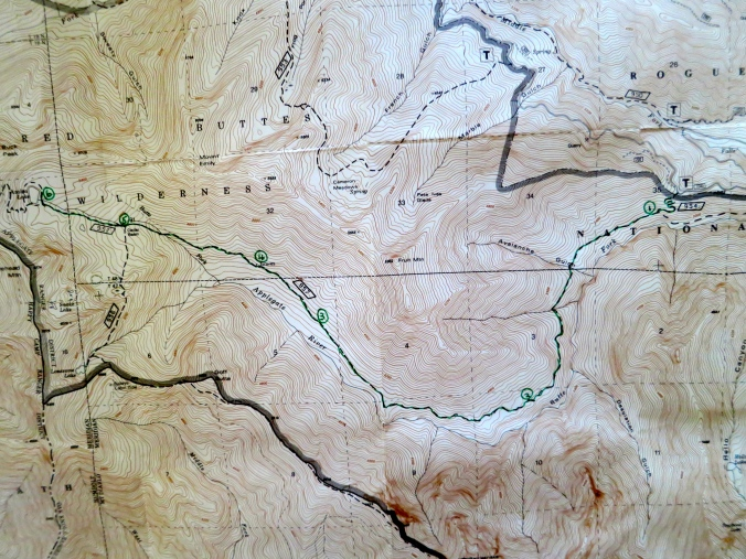 I planned out our route on a US Forest Service Topo Map. We followed the Butte Creek Trail to Azalea Lake.