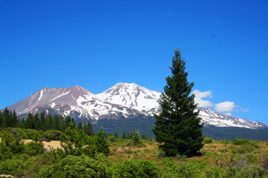 Mt. Shasta in Northern California.