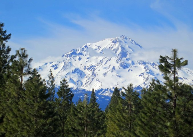 Picture of Mt. Shasta from Highway 89.