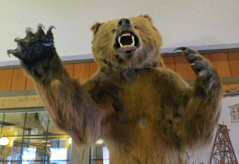 Peggy and I always stay at the Tonopah Station motel in Tonopah. You are invited to roll dice for a free room. I also like the bear.
