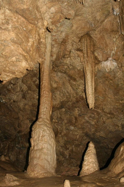 This photo from Oregon Cave National Monument shows the development of stalactites (coming down) and stalagmites (coming up). Eventually they meet, as demonstrating on the left. (Photo by Peggy Mekemson.)