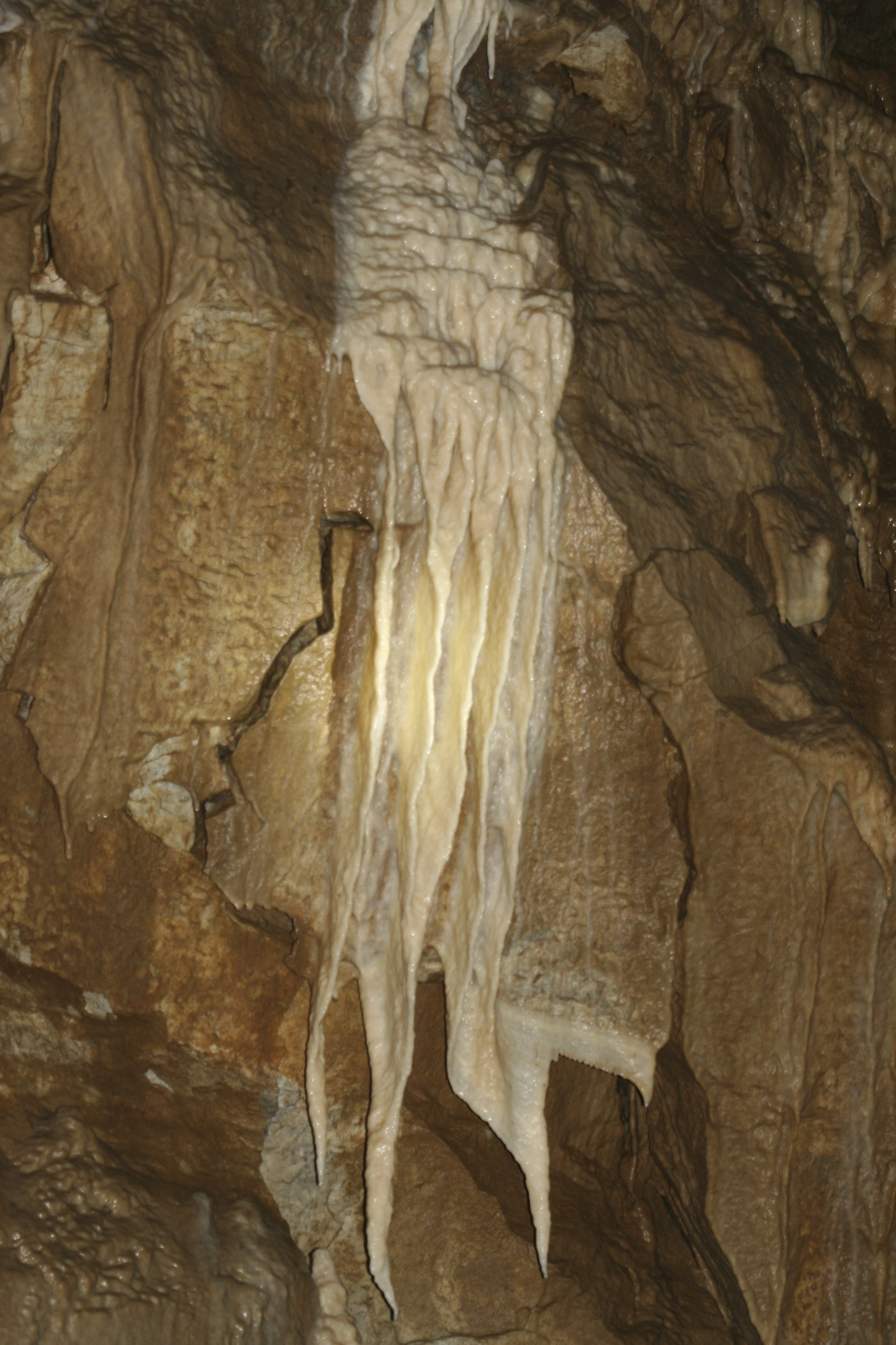 Ghostly rock waterfall at Oregon Caves National Monument.