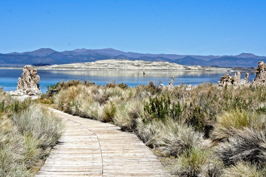 Following Highway 120 east off of Highway 395 will bring visitors to Mono Lake's South Tufa Trail where the photos in they blog were taken.