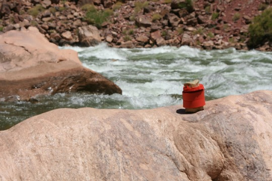Checking out the rapids of the Little Colorado River as part of an 18 day trip down the Colorado through the Grand Canyon, Bone wears his life vest for safety.