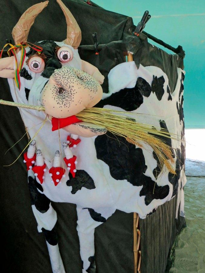 Wild eyed grass eating cow at Burning Man 2014.