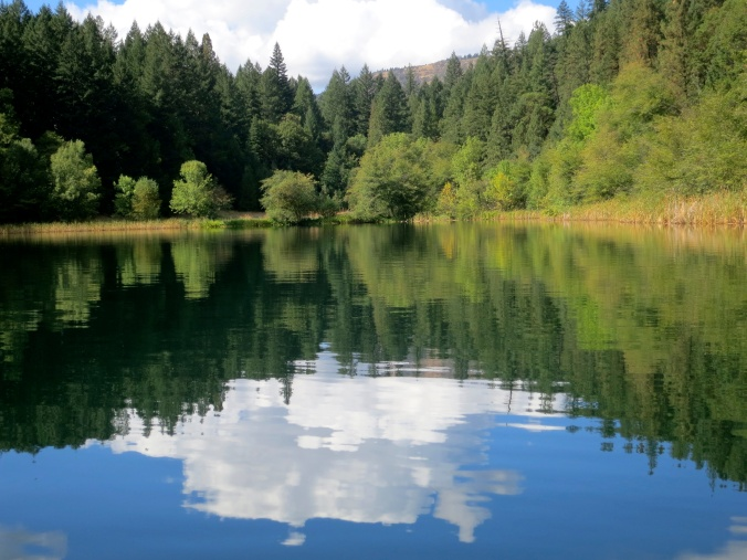 Cumulous clouds reflected in Squaw Lake of Southern Oregon near Applegate Lake. Photo by Curtis Mekemson.