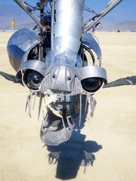 Close up of a dragon head at Burning Man 2014. Photo by Curtis Mekemson.