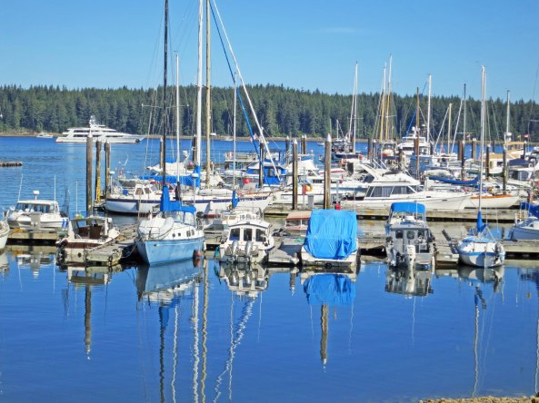 Harbor in Port McNeill on northeastern Vancouver Island. Photo by Curtis Mekemson.