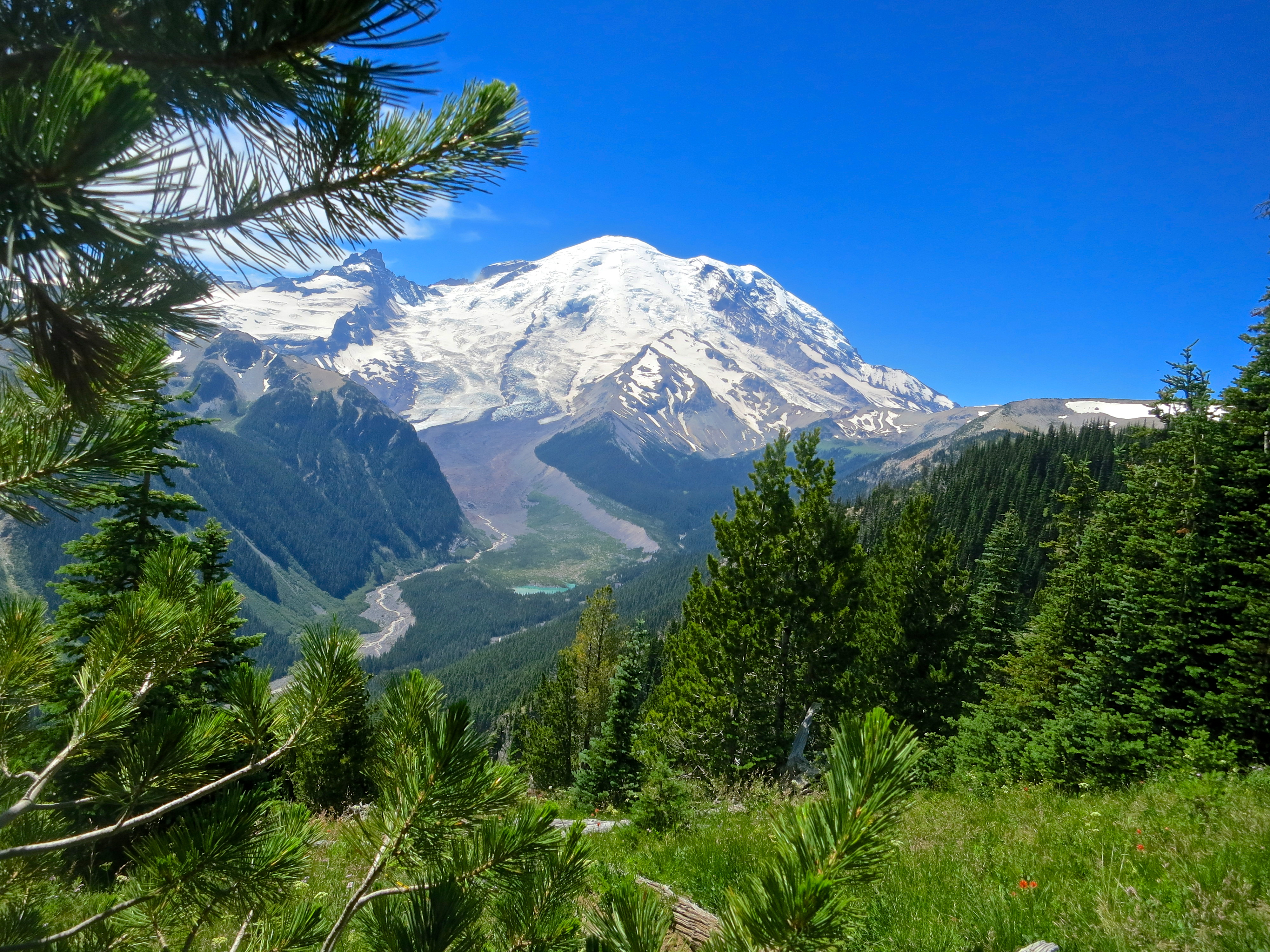 Mt. Rainier National Park | Wandering through Time and Place