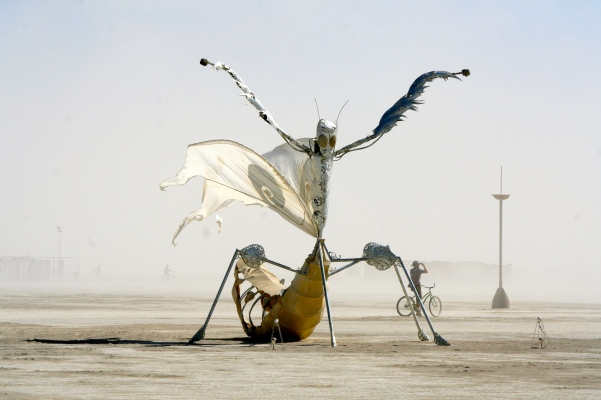 Giant praying mantis at Burning Man 2014. Photo by Curtis Mekemson.