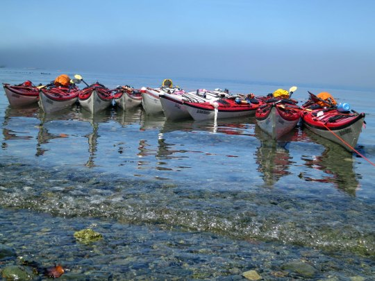 Kayaks belonging to the Sea Kayak Adventure group in the waters of Johnstone Strait, northeastern Vancouver Island.