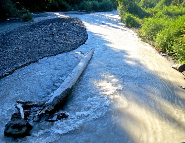 Fed by the Emmons, Frying Pan and Winthrop Glaciers, the White River is given its color by ground glacial rock dust.