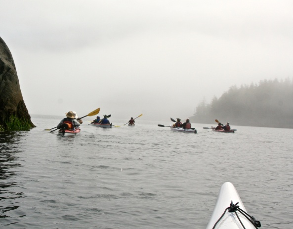 Sea Kayak Adventure group works its way around Hanson Island, British Columbia in the fog.