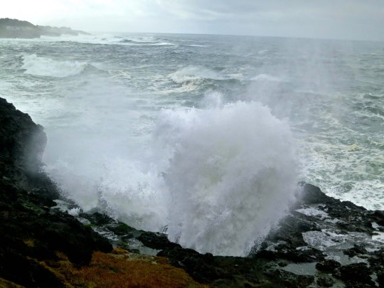View of Spouting Horns at Depoe Bay on the Oregon Coast. Photo by Curtis Mekemson.