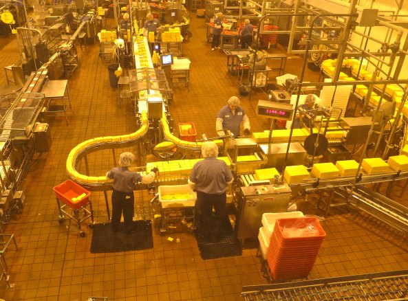 And here we have the mass production of cheese. Let's see, at $7.00 per block, that's a lot of dollars.