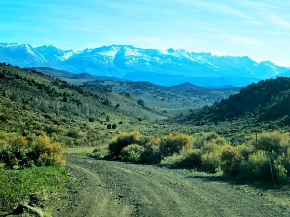 June: Sierra Nevada Mountains form the East. Peggy and I have backpacked through these mountains numerous times.