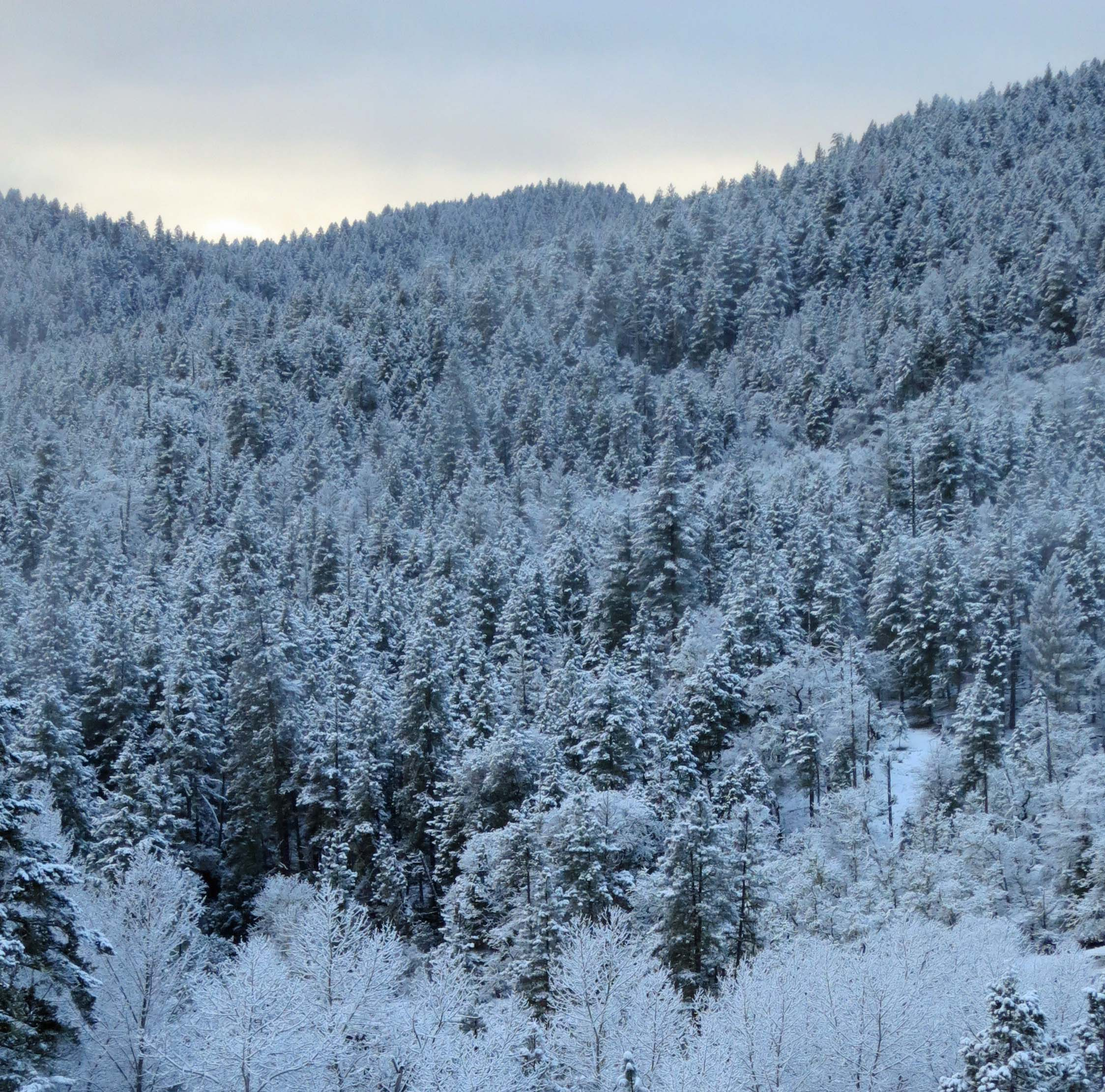 Upper Applegate Valley of southern Oregon covered in snow. Photo by Curtis Mekemson.
