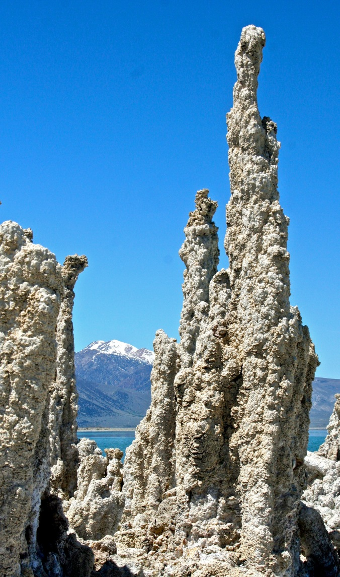 The cover: A tufa tower in Mono Lake with Sierra Nevada Mountains in Background. Eastern California.
