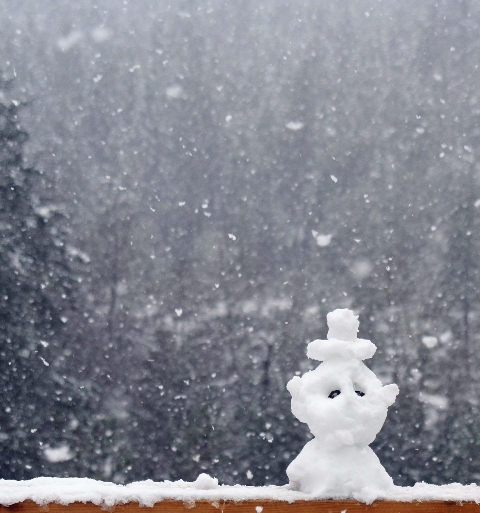 And what is a snowstorm without a snowman? I called this guy George. He reminded me of someone.
