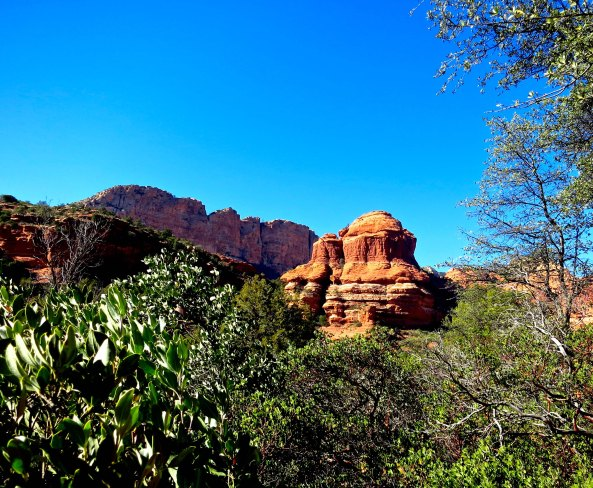 A view up Boynton Canyon in Sedona, Arizona. Photo by Curtis Mekemson.