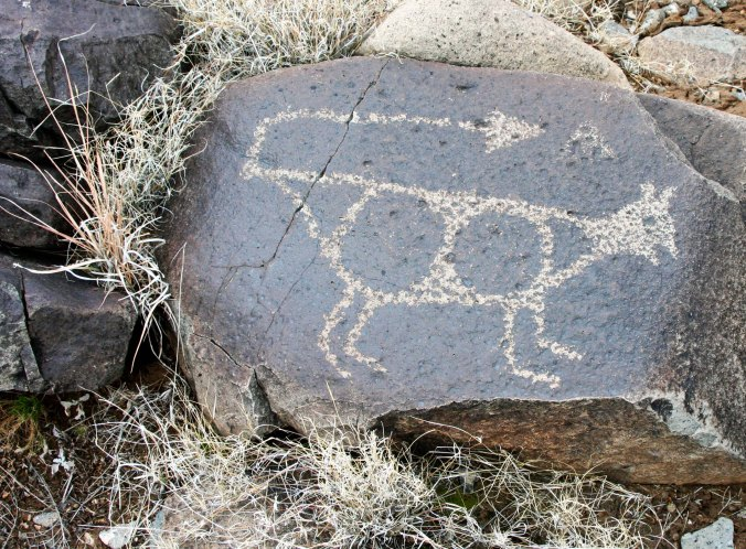 Indian rock art found in New Mexico.