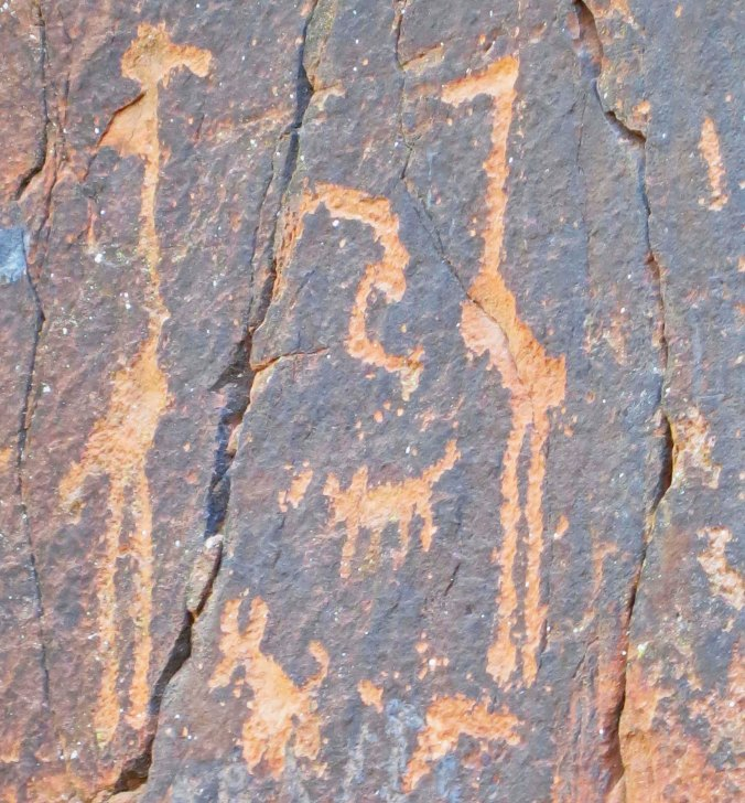 Big birds and camp dogs, four of !032 petroglyphs at the V-bar-V Heritage Site in the Verde Valley of Arizona.