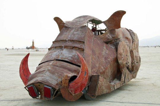 And finally, a wart hog.  NEXT BLOG: The buildings of Burning Man.