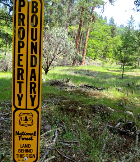 One of the reasons we bought our property was this sign, a boundary marker for the Klamath National Forest that borders the back of our property.