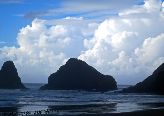 Cumulous clouds outline sea stacks in Cape Cove on the Oregon Coast.
