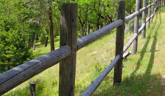 """While our front fence is a fairly serious fence, our back fence is strictly for aesthetics. It is an open invitation to the deer, cougars, bear and other wildlife that live in the forest to """"come on down."""" We'd even welcome Bigfoot. (grin.)"""