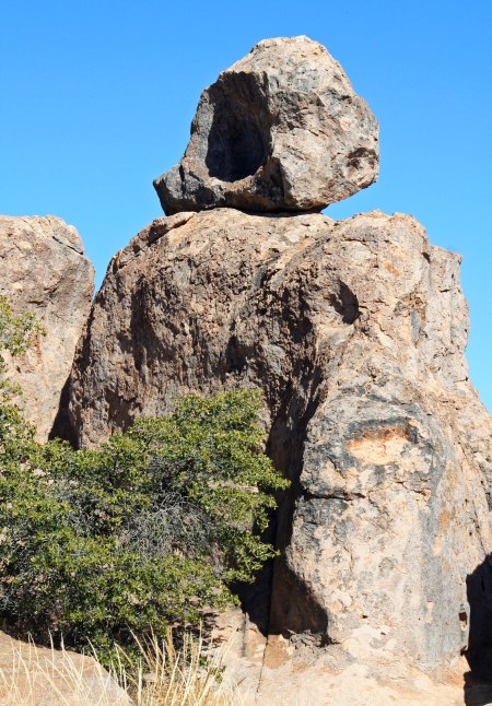 The City of Rocks State Park near Silver City New Mexico.