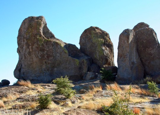 City of Rocks State Park in southwestern New Mexico.
