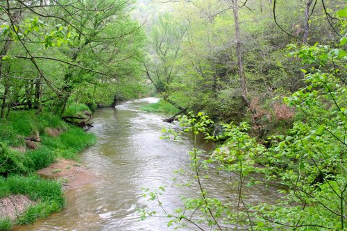 The Mekemson side of the family arrived in America in the 1750s. By the Revolutionary War, they were living alongside Deer Creek in Maryland. (Shown above)