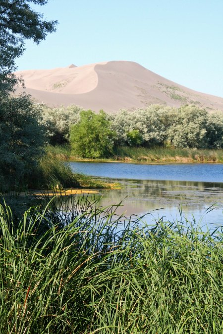The small lake backed up by the 470 high Dune gives the area an oasis feel.